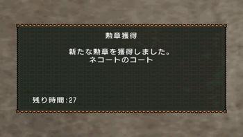 勲章(ネコートのコート).jpg