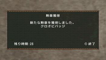 勲章(黒帯バッジ).jpg